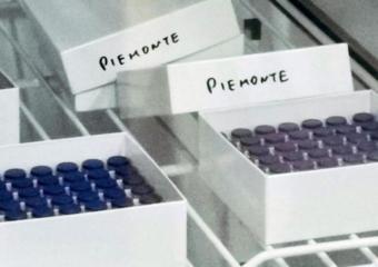 Campagna vaccinale Odontoiatri: la situazione in Piemonte